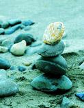 stone_main